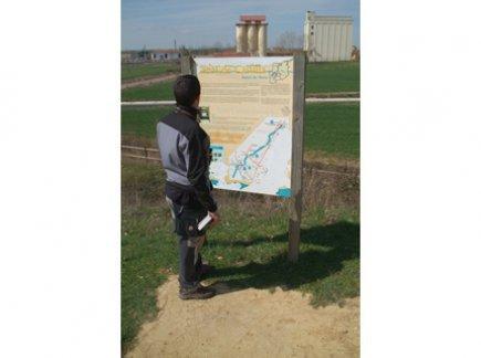 Peregrino mirando cartel